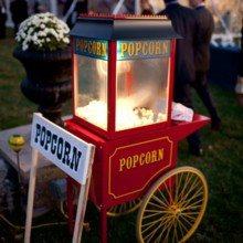 220x220 sq 1415899854193 popcorn machine
