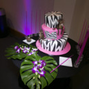 Neon Pink and Jungle Themed Cake