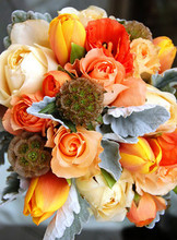 220x220_1397663512174-orange-and-cream-roses-yellowish-red-tulips-scabio