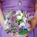 130x130 sq 1488919361243 purple lilacs susan sancomb photos