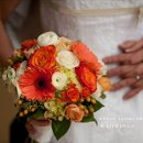130x130 sq 1310582015032 timberlinewedding1