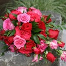 130x130 sq 1390863764616 bb0573 pink and red rose cascade bouque