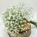 130x130 sq 1421032559372 bb1013 babys breath bridesmaids bouquet