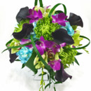130x130 sq 1421033598060 bb0947 modern vibrant green purple and teal brides
