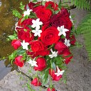 130x130 sq 1459573973184 bb0243 red freedom and black baccara rose cascade