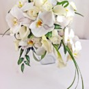 130x130 sq 1459574019364 bb0866 white phalaenopsis cascadeing bouquet