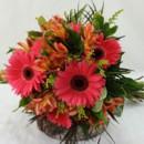 130x130 sq 1459575008806 bb1008 coral gerbera daisy brides bouquet