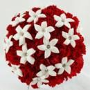 130x130 sq 1459655656197 bb0950 red carnation and white stephanotis wedding