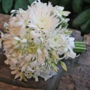 130x130 sq 1459656614989 bb0523 white spider mum and orchid brides bouquet