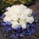 130x130 sq 1459656762672 bb0377 white rose and royal blue belladonna brides