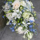 130x130 sq 1459656777829 bb0576 blue and white mixed garden cascade