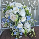 130x130 sq 1459656786278 bb0667 blue and white cascade