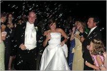 220x220 1205771617032 weddingrobus