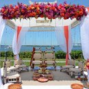130x130 sq 1358971151504 35indianweddingcoralandpinkflowers