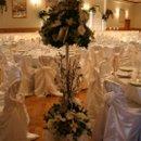 130x130 sq 1213727345545 topiary tree1
