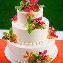 130x130 sq 1313518805955 cake
