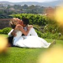 Edna Valley Vineyard bride & groom neck kiss