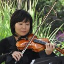 130x130 sq 1340903883810 violin2