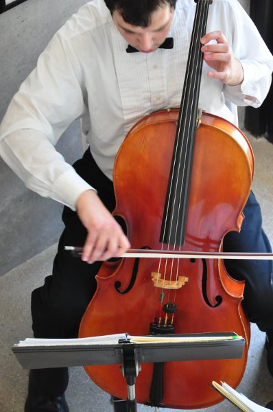photo 12 of Arioso Strings