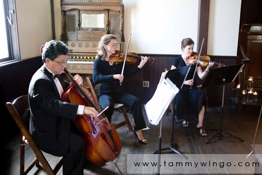 photo 19 of Arioso Strings