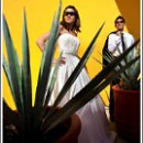 130x130_sq_1282020911498-loscabosweddingphotographer11