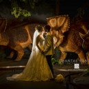 130x130 sq 1490364634113 wedding photo dinosaur