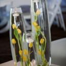 130x130_sq_1373460178645-tulips