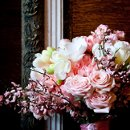 130x130_sq_1303698065321-bridalshootfrisbie1