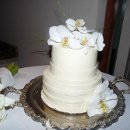130x130 sq 1296026403471 phalanopisonweddingcakemedium