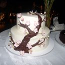 130x130_sq_1296346681440-weddingcake