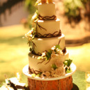 130x130_sq_1381379844612-dinosaur-topper-nature-floral-forest-wedding-cake