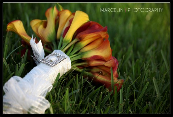 photo 52 of Marcelin Photography