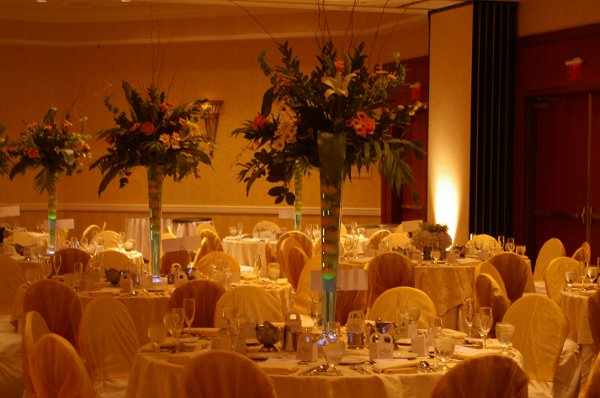 photo 54 of Signature Inspirations Wedding and Event Planners