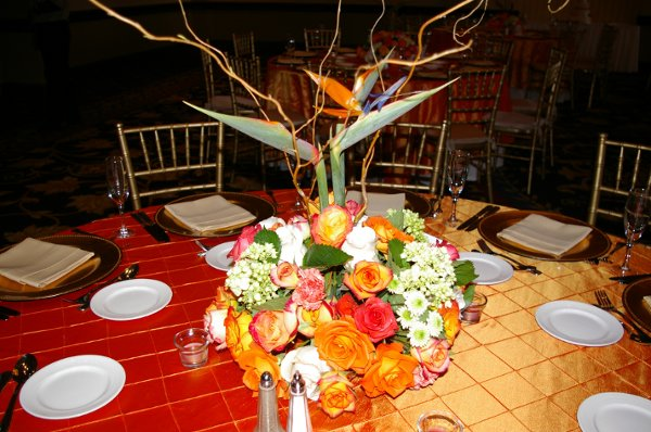 photo 76 of Signature Inspirations Wedding and Event Planners