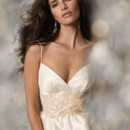 Style 1061 Ivory Dupioni bridal ball gown, sweetheart neckline, natural waist with Blush lace accented with petals and crystals, full gathered skirt, side pockets, sweep train