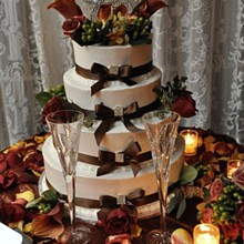 220x220 sq 1302107761755 weddingcake
