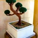 130x130 sq 1390685870336 bonsai grooms