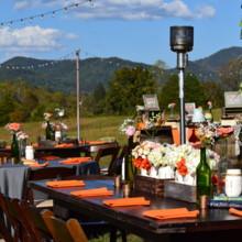 Country Manor Acres Venue Townsend Tn Weddingwire