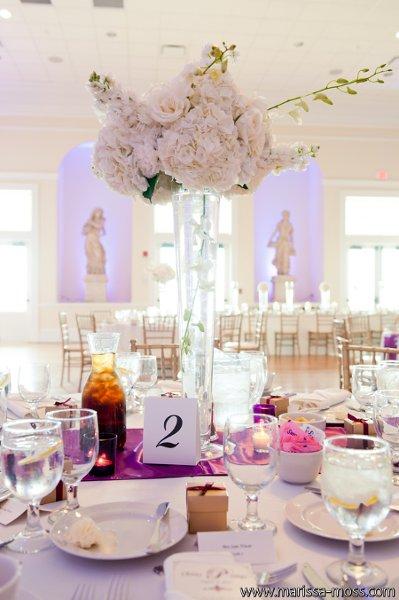 The Regent Riverview Fl Wedding Venue