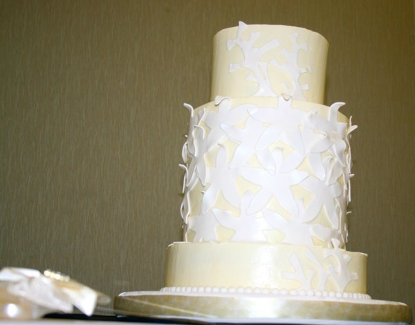 1326989486901 Dc201171 Charleston Wedding Cake