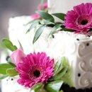 130x130_sq_1302876641583-cake