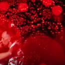 130x130 sq 1455048566463 amanda and max barcelo maya palace wedding photogr