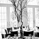 130x130 sq 1301370621950 thetabledecor