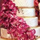 130x130 sq 1313756744089 cake10