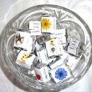 130x130 sq 1354922897703 masonjarwithsunflowercandywraps