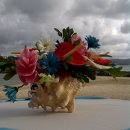 130x130_sq_1301273467315-flowersfrombeach