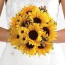 130x130 sq 1302195260353 sunflower1