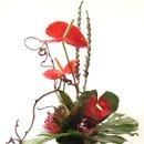 130x130 sq 1302202264416 exoticflowerarrangement
