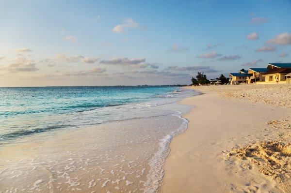 Grand Cayman Island Florists