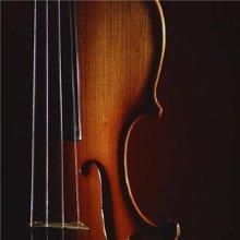 220x220 1336668892397 violin